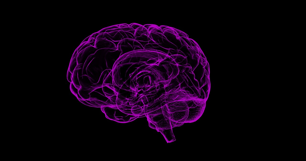 ¿Qué efecto tiene la marihuana en el cerebro?