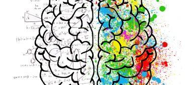 Efectos mentales de la marihuana…